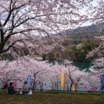 春の訪れを告げるイベント